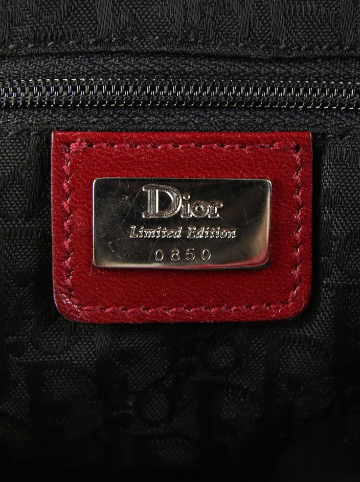 Bolsa Christian Dior Saddle Victim Crystal