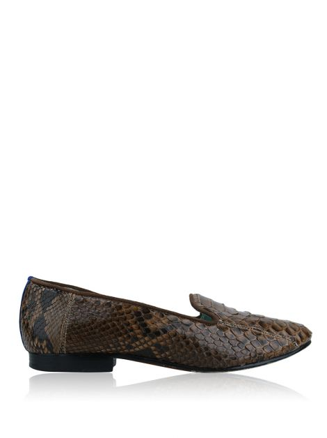 Slipper Blue Bird Python Marrom
